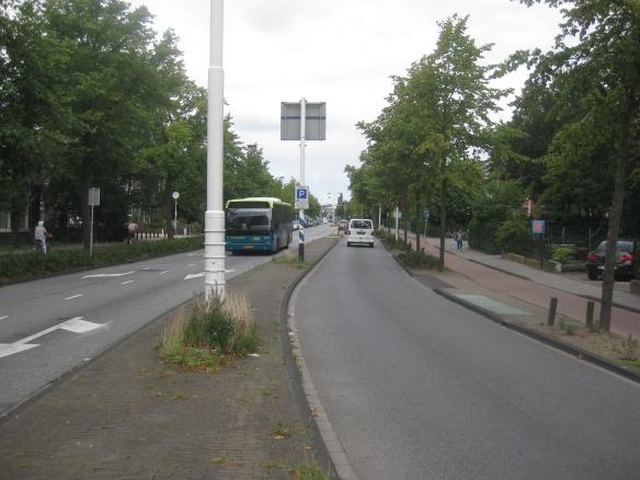 De Rijnsburgerweg